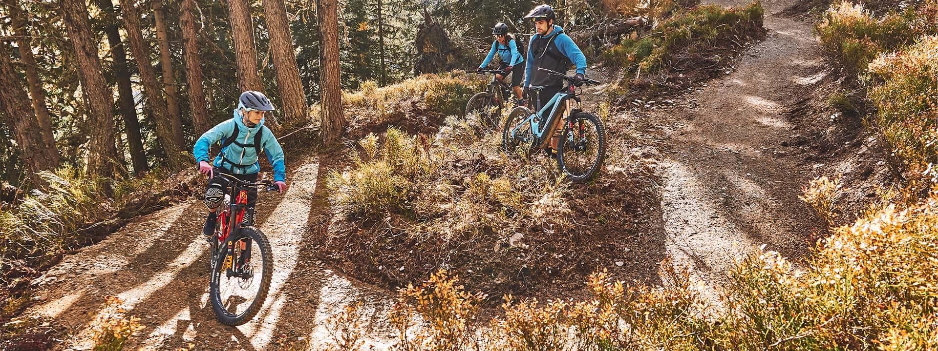 Bikepark Schladming/Reiteralm Trail Details